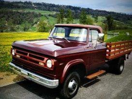 Dodge W300 Mowag voll
