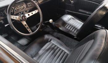 Ford Mustang GT-Shelby-Look, Schaltgetriebe, California-Import voll