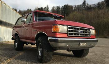 Ford Bronco 1 voll