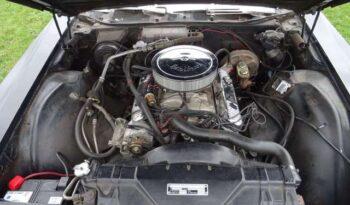 Buick Wildcat Custom voll