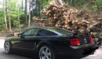 Ford Mustang GT voll